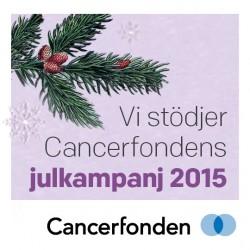 facebook-foretag-gava-julen-2015-250x250
